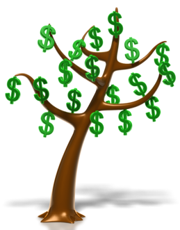 dollar_tree_400_clr_8754